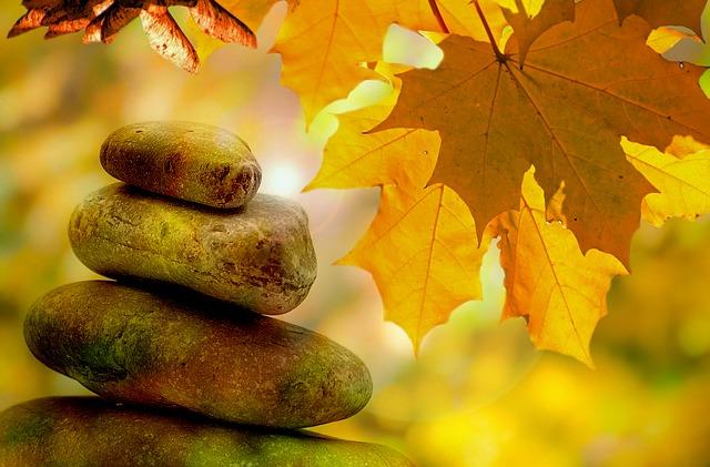 stones, leaves